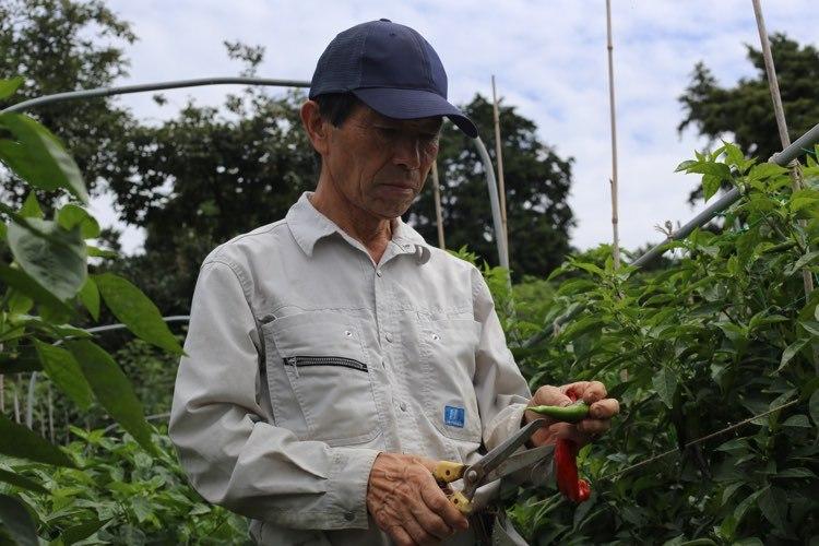 提携されている農家の方々